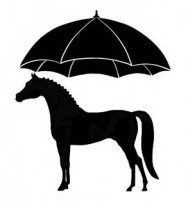 The Horse Umbrella - Home